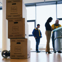 relocari mutari firme, birouri